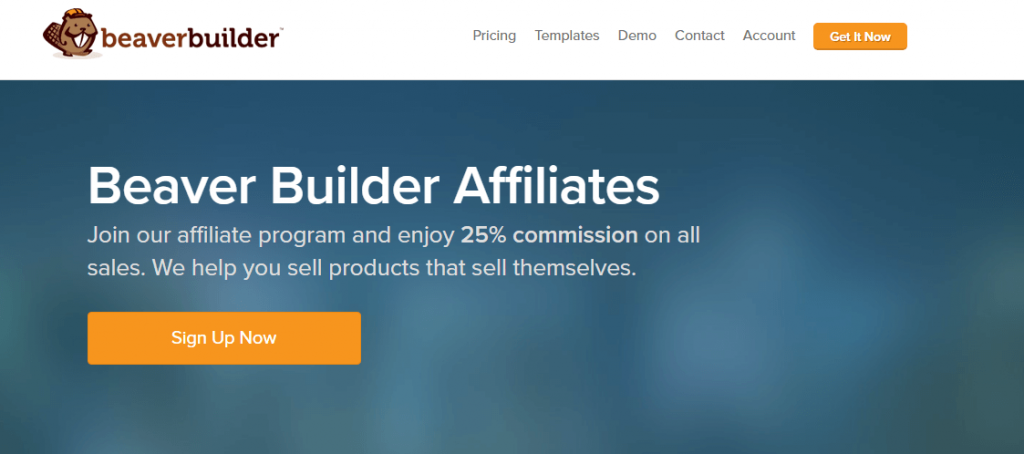 Best Affiliate Programs For WordPress 2020 13