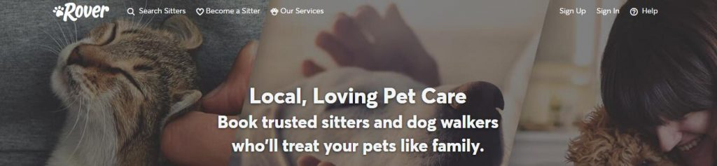 pet sitting jobs