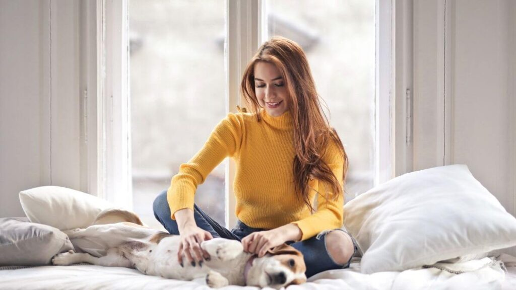 Pet Sitting Jobs