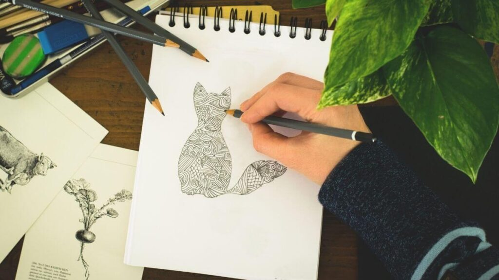 Get Paid To Draw